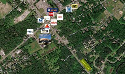 Blakeslee Commercial For Sale: Pa Rt 115