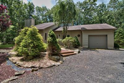 Jim Thorpe Single Family Home For Sale: 308 Mountain View Dr