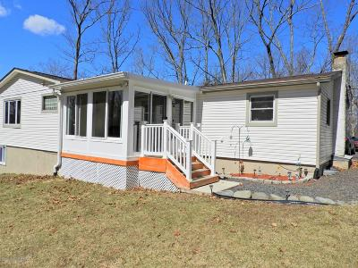 East Stroudsburg Single Family Home For Sale: 1163 Park Dr
