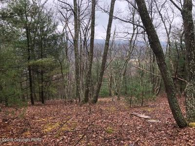 Saylorsburg Residential Lots & Land For Sale: 120 Blueberry Rd