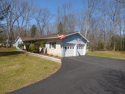 East Stroudsburg Single Family Home For Sale: 1205 Cherry Lane Rd