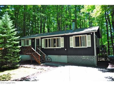 Pocono Lake Single Family Home For Sale: 158 Choctaw Dr