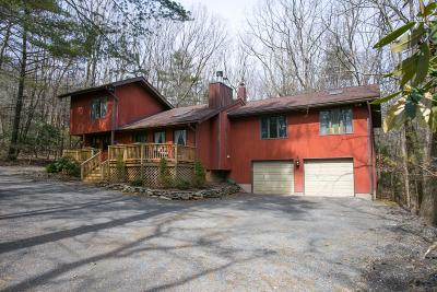 Tannersville Single Family Home For Sale: 190 Cobble Creek Dr