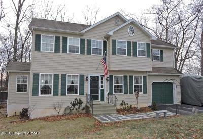 Stroudsburg Single Family Home For Sale: 1015 Tara View Dr