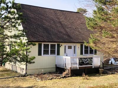 Blakeslee Single Family Home For Sale: 366 Skyline Dr