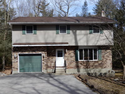 Stroudsburg Single Family Home For Sale: 1712 Vineyard Rd