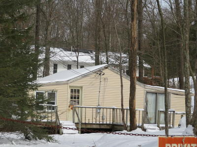 East Stroudsburg Single Family Home For Sale: 3918 Lois Ln