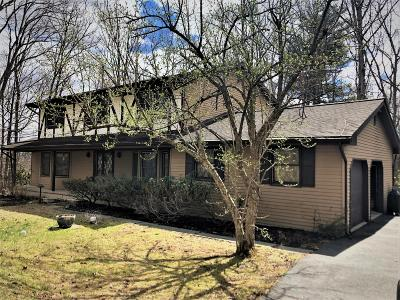 East Stroudsburg Single Family Home For Sale: 1616 Brushy Mountain Rd
