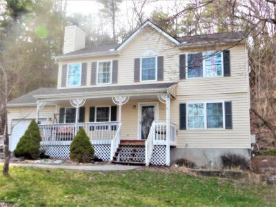 East Stroudsburg Single Family Home For Sale: 2374 Woodcrest Dr
