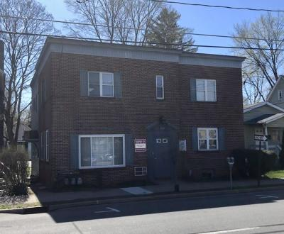 Monroe County Commercial For Sale: 223 Washington Street