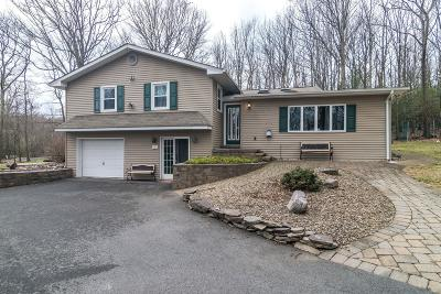 Saylorsburg Single Family Home For Sale: 148 Darcy Dr