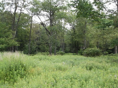 Tobyhanna Residential Lots & Land For Sale: T 591 Pocono Heights Rd 5.18 Ac. +/-