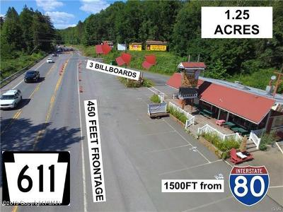 Monroe County Commercial For Sale: 2477 Route 611