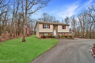 Effort Single Family Home For Sale: 558 Catskill Drive
