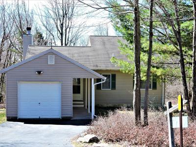 Blakeslee Single Family Home For Sale: 140 Buck Hill Rd