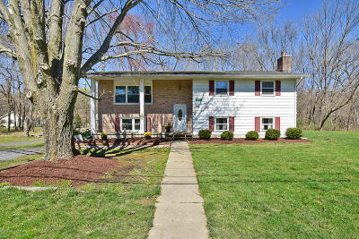 Stroudsburg Single Family Home For Sale: 1106 Wedgewood Lake Drive