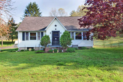 Stroudsburg Single Family Home For Sale: 7125 Route 209
