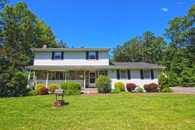 Saylorsburg Single Family Home For Sale: 295 E Shady Oaks Dr