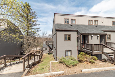 Tannersville Single Family Home For Sale: 39 Slalom Way