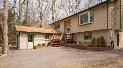 Pocono Summit Single Family Home For Sale: 1158 Thunder Dr