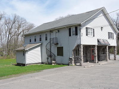 Monroe County Multi Family Home For Sale: 1289 209 Rte