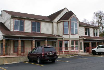 East Stroudsburg Commercial For Sale: 247 Fox Run Ln, Ste 202