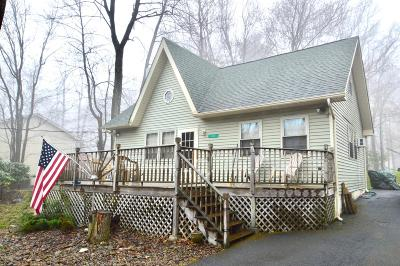 Pocono Summit Single Family Home For Sale: 112 Tamarack Trl