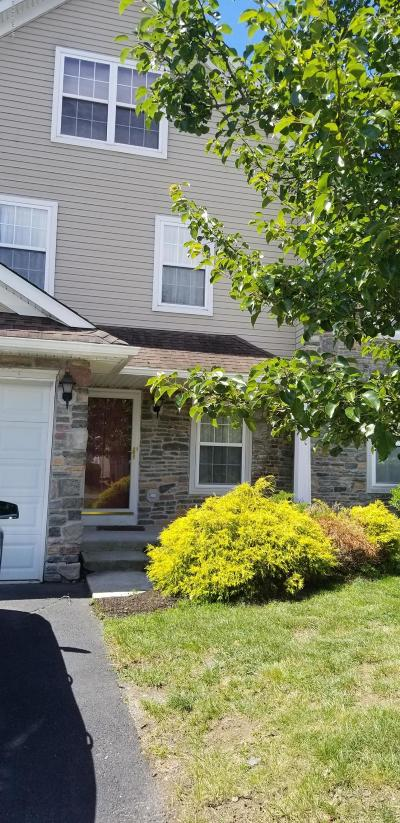 East Stroudsburg Single Family Home For Sale: 65 Lower Ridgeview Cir #C