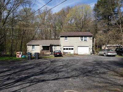 East Stroudsburg Multi Family Home For Sale: 458 Hannan Ln