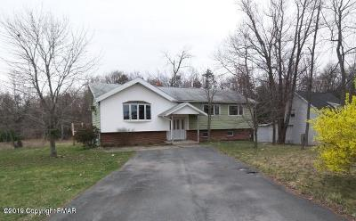 Blakeslee Single Family Home For Sale: 5642 Route 115 Rte