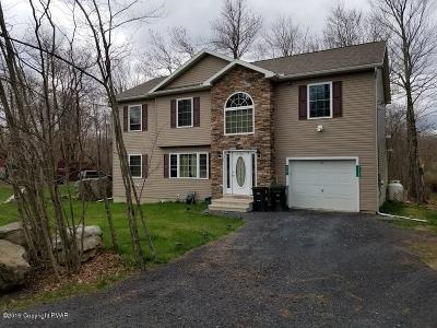 Tobyhanna Single Family Home For Sale: 3100 Briarwood Dr
