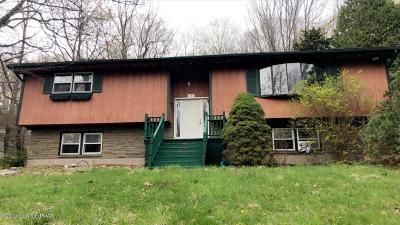 Mount Pocono Single Family Home For Sale: 14 Holly Frst