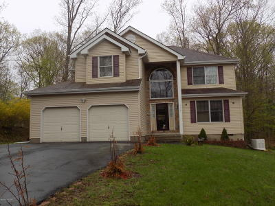 East Stroudsburg Single Family Home For Sale: 1167 Park Dr