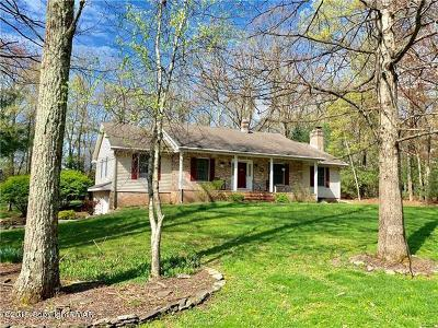 Saylorsburg Single Family Home For Sale: 139 Lemond Dr
