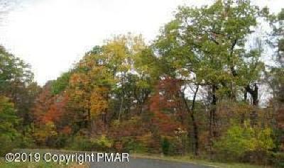 Stroudsburg Residential Lots & Land For Sale: 5206 Mountainside Dr