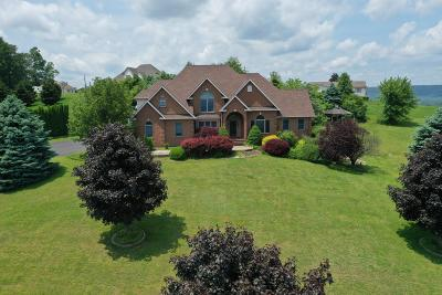 Lehigh County, Northampton County Single Family Home For Sale: 2887 Schaner Blotz Dr