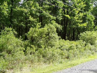 East Stroudsburg Residential Lots & Land For Sale: Lot #20 Lake Dr
