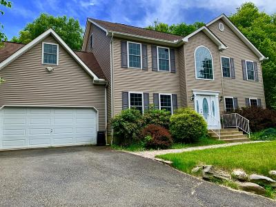 East Stroudsburg Single Family Home For Sale: 214 Fringe Dr