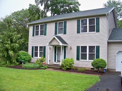 Mount Pocono Single Family Home For Sale: 53 Pine Hill Rd