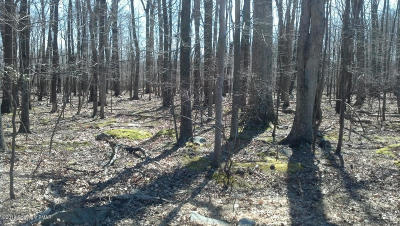East Stroudsburg Residential Lots & Land For Sale: Lot 31, 32 Lenape Dr