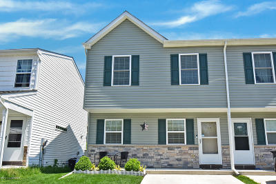 Lehigh County, Northampton County Single Family Home For Sale: 318 Central Park Ave
