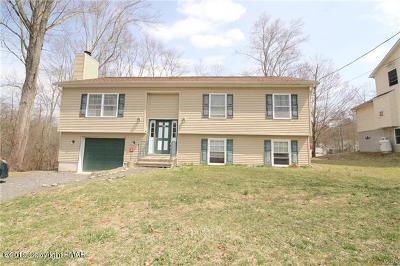 East Stroudsburg Single Family Home For Sale: 5019 E Pine Ridge Rd