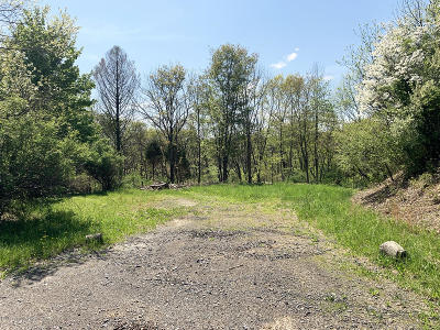 Saylorsburg Residential Lots & Land For Sale: Lake View Drive #222