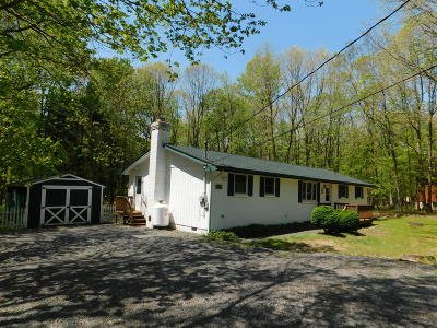 Jim Thorpe Single Family Home For Sale: 26 Hawthorne Dr