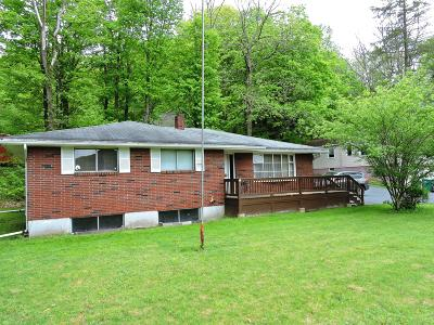 East Stroudsburg Single Family Home For Sale: 105 Pugh Ln