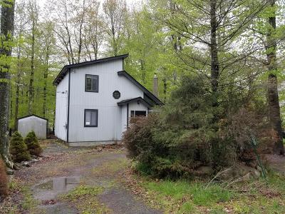Monroe County, Pike County Rental For Rent: 7409 Ventnor Dr