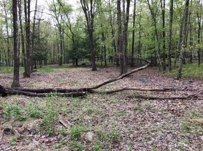 East Stroudsburg Residential Lots & Land For Sale: 5495 Gingerbread Ln