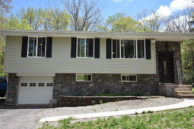 Jim Thorpe Single Family Home For Sale: 28 Andrew Dr