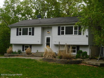 East Stroudsburg Single Family Home For Sale: 105 Ledgewood Dr