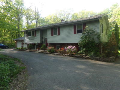 Kunkletown Single Family Home For Sale: 186 High Point Drive